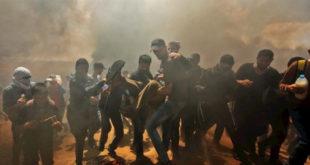 غزةُ تكتبُ بالدمِ تاريخَها وتسطرُ في المجدِ اسمَها
