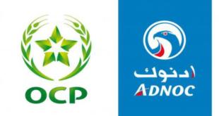 المغرب .. إحداث شركة عالمية لإنتاج الأسمدة