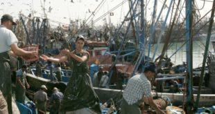 التوقيع على اتفاقية الصيد البحري..خيبة امل أخرى لميليشيات البوليساريو