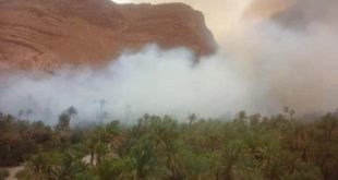 تيزنيت…حريق يلتهم واحة النخيل والساكنة تطالب بمروحيات