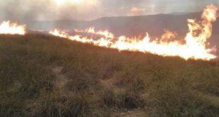 جرسيف ..حريق مهول يلتهم 15 هكتارا من الغطاء الغابوي