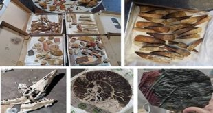 إحباط محاولة تهريب كمية كبيرة من القطع الجيولوجية خارج المغرب