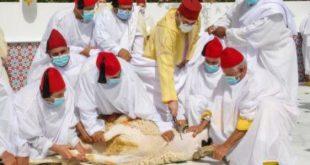 برقية تهنئة مرفوعة من الأستاذ بوحسن إلى صاحب الجلالة الملك محمد السادس بمناسبة عيد الأضحى المبارك
